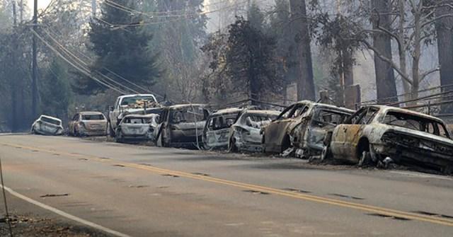 USA-s Kalifornias ajaloo laastavaim tulepõrgu – tules hävinud juba 6453 elumaja