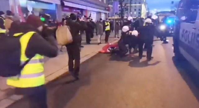 PILDID: Politsei võttis Helsingis meeleavaldajatelt haakristiga lipud, väljas olid koerad