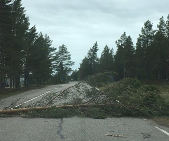 Soomet tabas üllatav torm, elekter on mitmel pool ära
