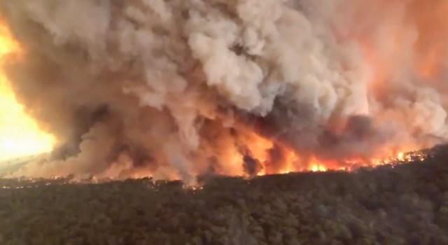 Sotsiaalmeedias lööb laineid video tulekatastroofist Austraalias
