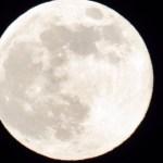 NASA: Kuu peal leiti esimest korda vett