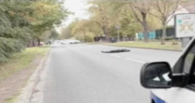 Uus info Pariisi rünnaku kohta: tapja oli 18-aastane nooruk, kes lõikas oma õpetajal pea otsast