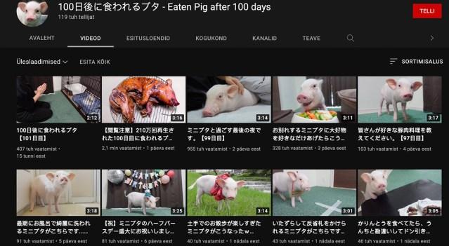 Jahmatav videosari: jaapanlanna võttis põrsa, kasvatas seda ja siis sõi selle ära