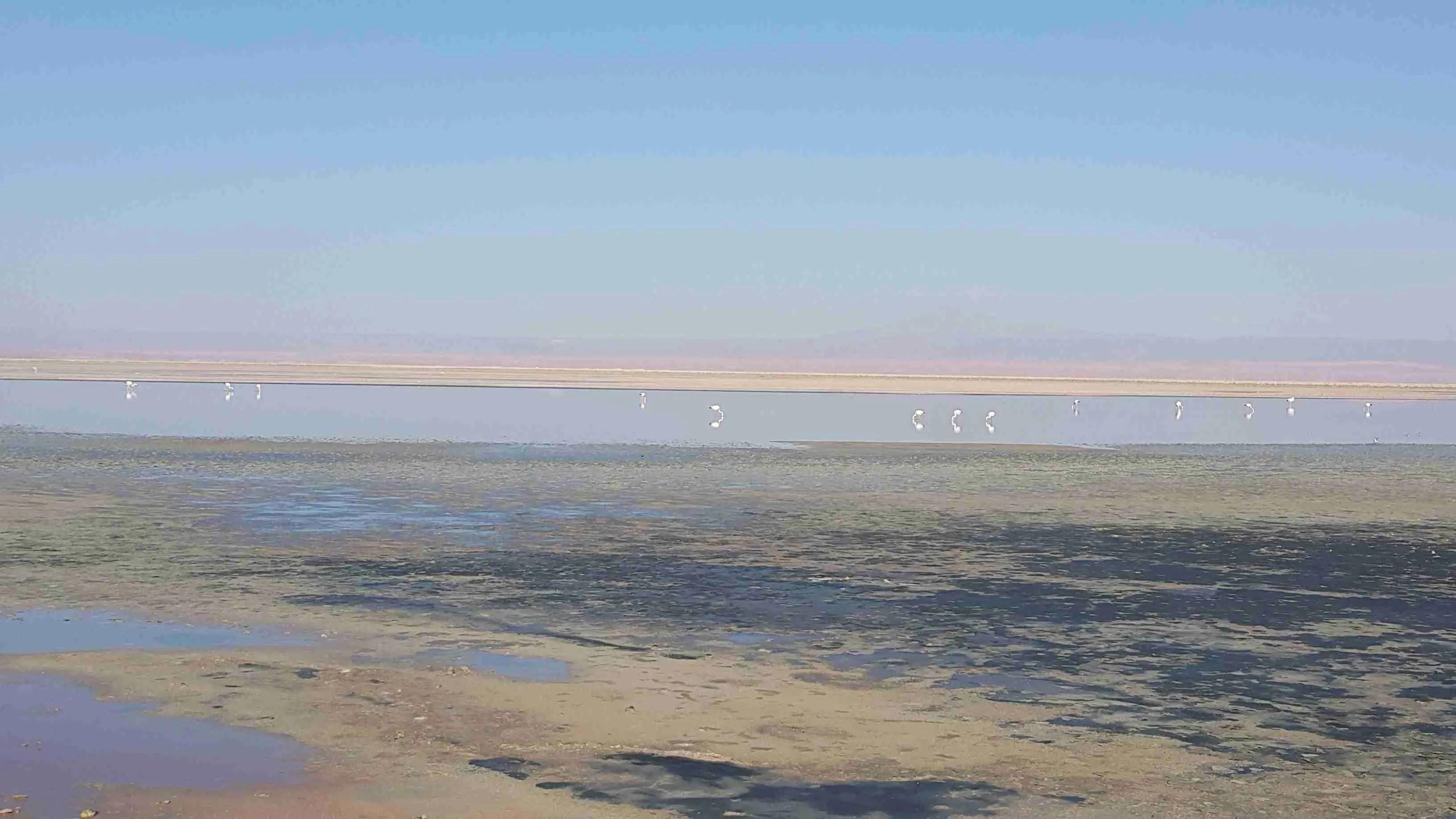 4 päeva Tšiilis. San Pedro de Atacama