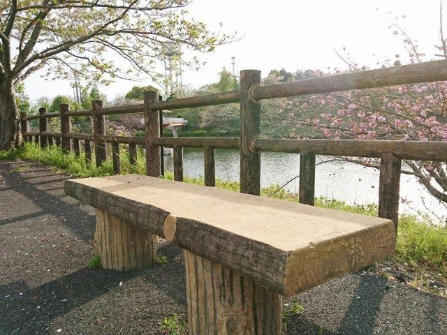 春野運動公園の散歩コース