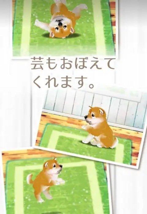 子犬育成ゲーム