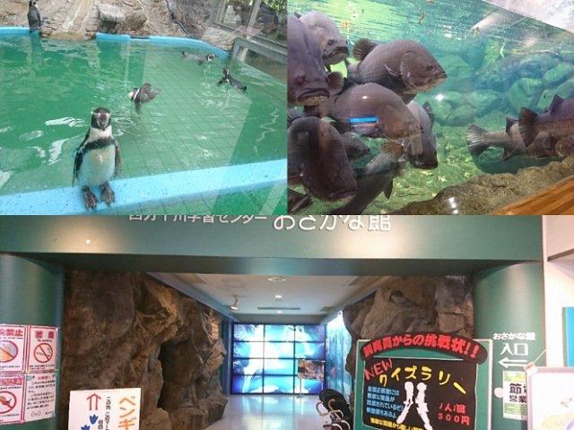 おさかな館へ行ってきた!-愛媛県松野町の水族館