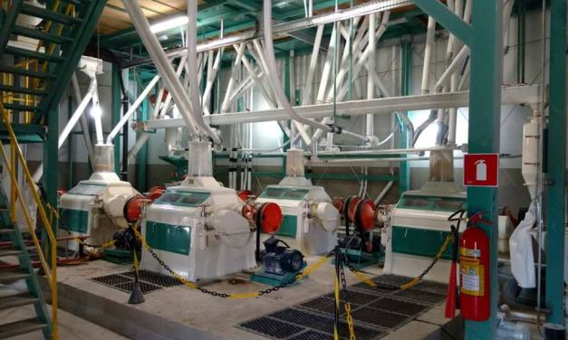 An expensive wheat and a weak demand beaten the milling industry
