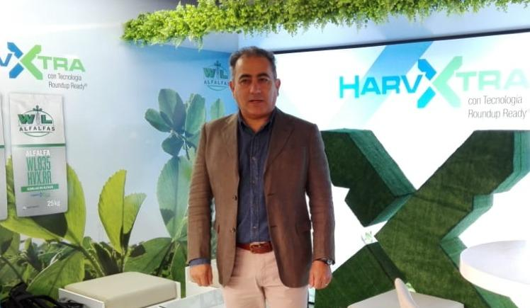 HarvXtra alfalfa will commercialize next autumn in Argentina