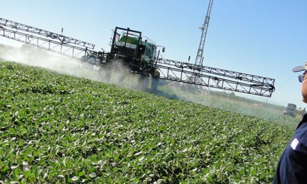 Argentina to ban the  butyric esters of 2-4D herbicide