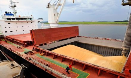 Argentina emerges as the third world largest soybean importer