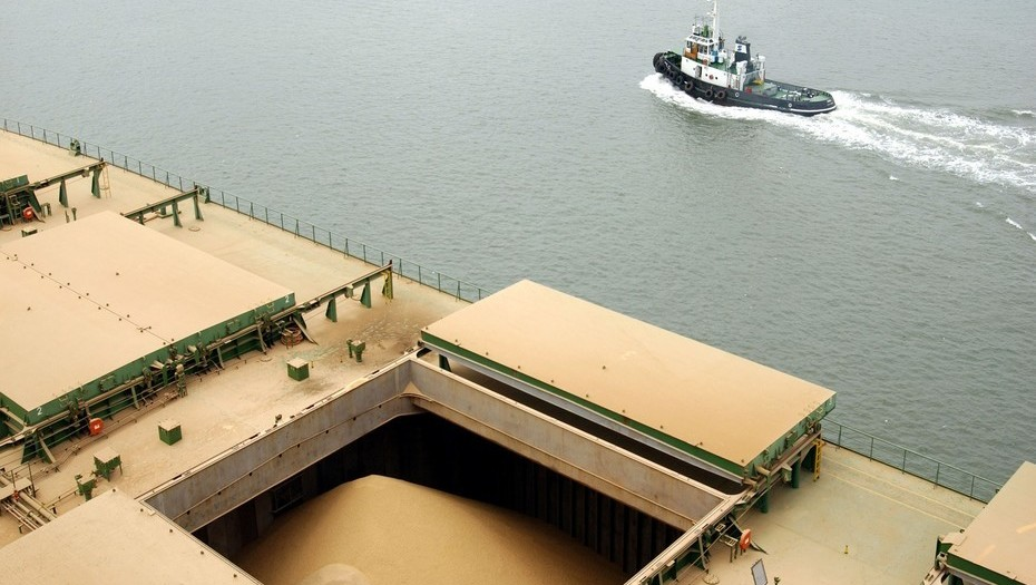 As biodiesel exports drop to zero, Argentina increases its soybean oil exports