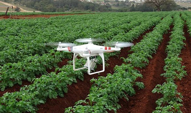 Deadly attraction: ISCA technology revolutionizes sustainable agriculture with insects disruptive control