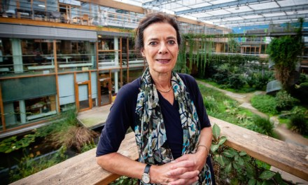 Wageningen University scientist, now member of the Syngenta board