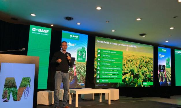 Herbicide-resistant weeds: BASF exhibited results of Zidua