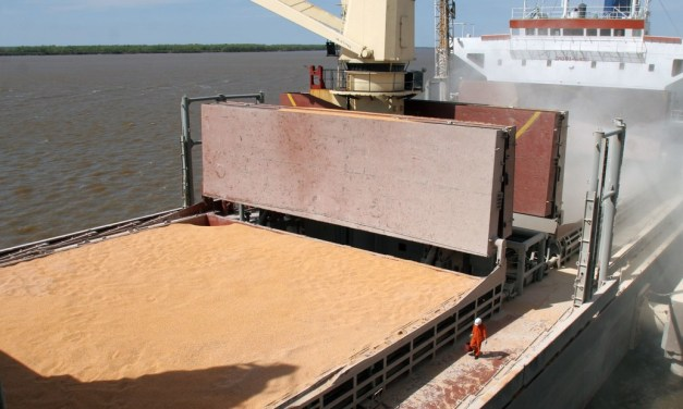 Argentina increases its non-industrialized soybean exports