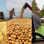 Argentine farming and agribusiness: know the highlights of the week