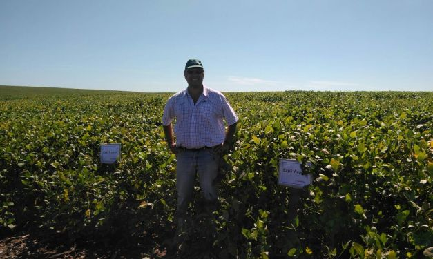 Santa Rosa Seeds presents its three new varieties for the soybean campaign