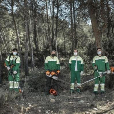 Operarios forestales del Campus Diversia