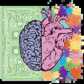 Cerebro y corazón