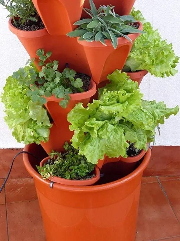Ejemplo de montaje del Ecogarden Irisana 72 con varias plantas y hortalizas