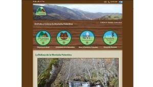 diseño-web-jardinmandala