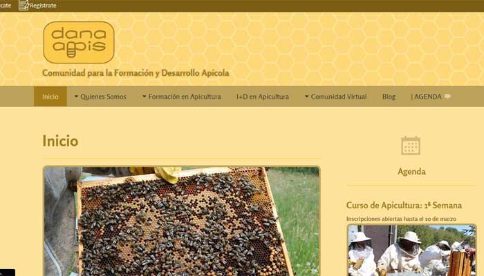 diseño-web-comunidad-virtual-dana-apis