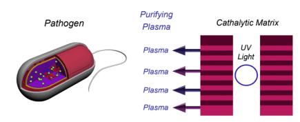 plasma RCI