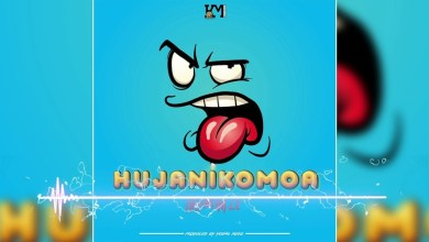 Harmonize - Hujanikomoa Mp3 Audio Download