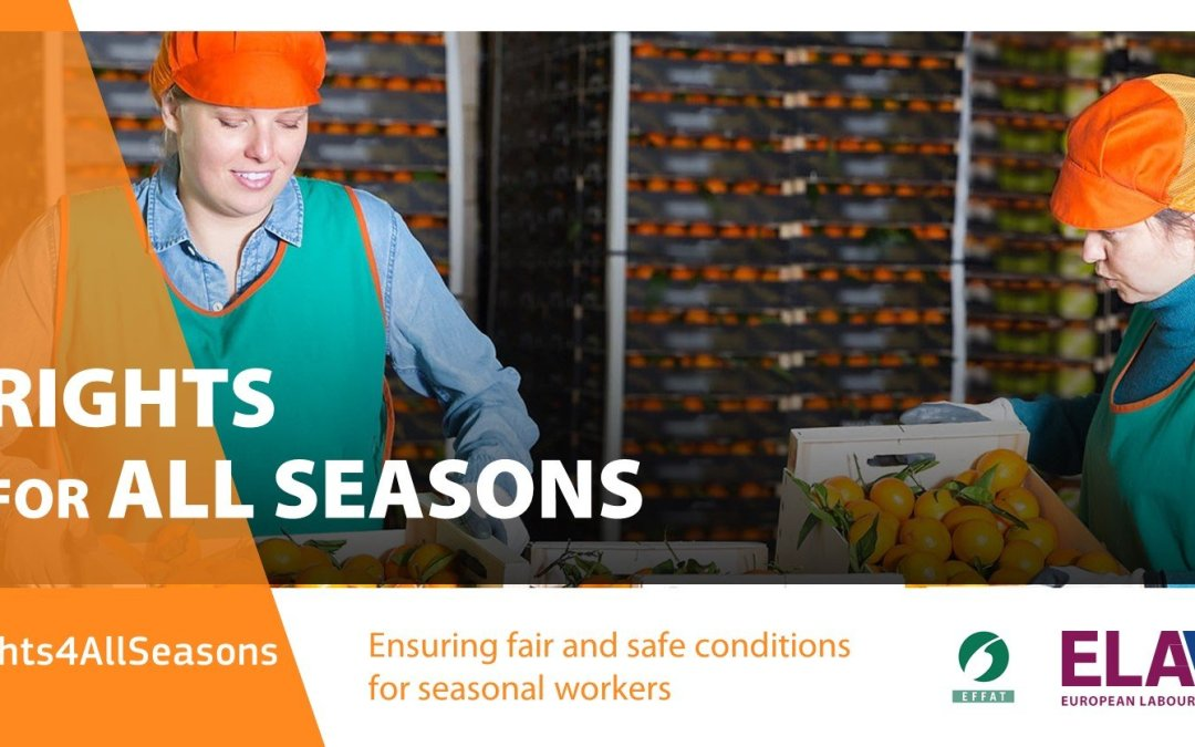 #Rights4AllSeasons  – EFFAT joins European Labour Authority's Campaign on fair work for seasonal workers