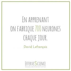 AZ-En apprenant on fabrique 700 neurones chaque jour-David Lefrançois
