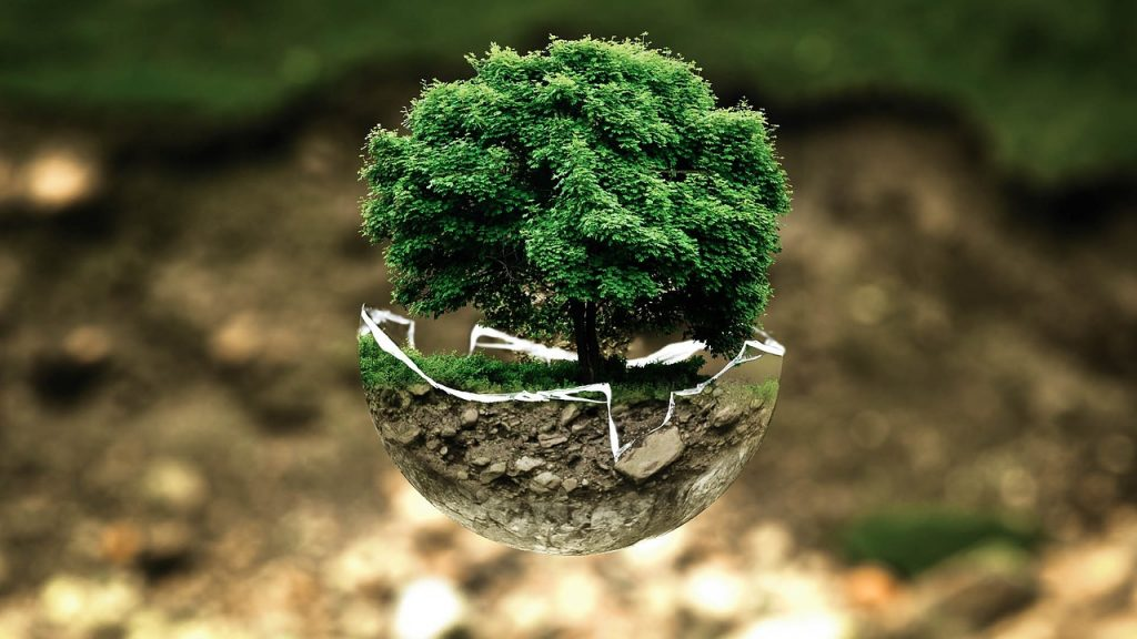 5 juin, Journée mondiale de l'environnement