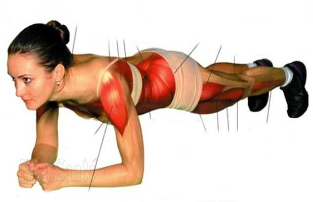 force phisique, tonification, maigrir, perte de poids