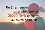 Saviez-vous que...Un être humain produit environ 25000 litres de salive au cours de sa vie