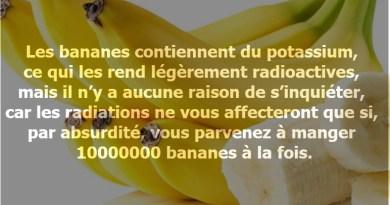 les bananes sont radioactives, les bananes sont nocives, les bananes