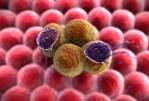 Le cancer du pancréas agressif peut être traité