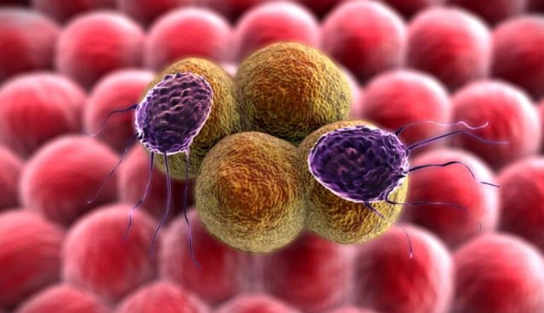 cancer du pancréas, comment traiter le cancer de pancréas