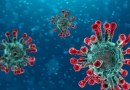 le coronavirus