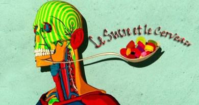 sucre, cerveau, consommation de sucre