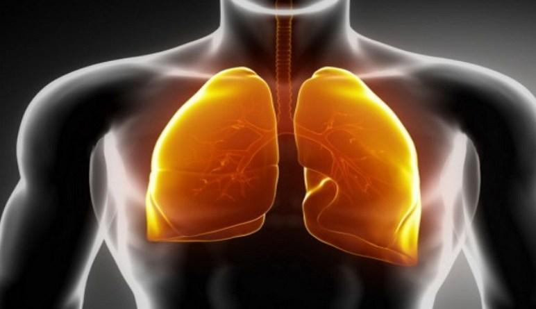 maladies des poumons, pneumonie, les signes de la pneumonie