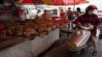 Les chiens reclassés comme « ami humain »: leur consommation sera interdite en Chine