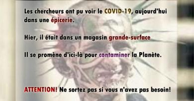 pandémie, épidémie, coronavirus, SRAS, Grippe, virus, maladies infectieuses, covid-19, covid, choléra, Ébola