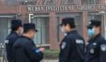 En décembre 2019, il y avait déjà 13 souches du virus à Wuhan