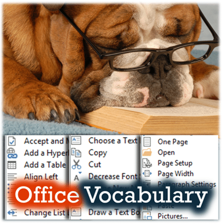 Microsoft Office Vocabulary