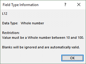 Data Validation in Excel - shown in descriptive format in Field Type Information