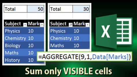 Aggragate function to Sum visible cells only
