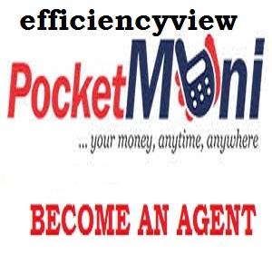 Pocket Moni Agent