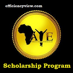 Africa's Young Entrepreneur (AYE) Scholarship Program 2020/2021