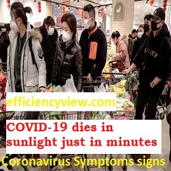 How Sunlight can cure Coronavirus in just minutes