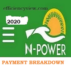 Npower Monthly Stipends Payment Breakdown by Mr Afolabi Imoukhuede